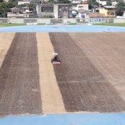 Botafogo aproveita parada e troca gramado do campo anexo do Nilton Santos