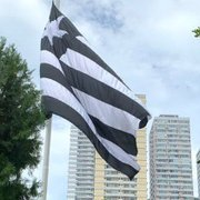 Caso Botafogo vire empresa, investidores podem quitar dívida do clube em até cinco anos