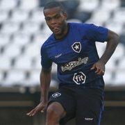 Com Pimpão, sem Gilson: Botafogo faz treino em campo reduzido. Vinicius Tanque se destaca