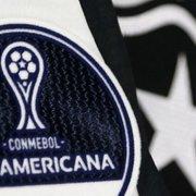 Despedida do Botafogo em 2019 vale mais R$ 900 mil, vaga na Copa Sul-Americana e chamariz para investidores