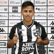 Sem engrenar, trio de reforços gringos tem início difícil no Botafogo