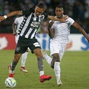 Luiz Fernando comemora gol pelo Botafogo: 'A hora certa ia chegar'