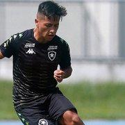 Pacotão de reforços 'patina', e Botafogo vê poucas caras novas no time