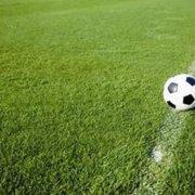 Fundo que comprou o Newcastle quer mais três clubes, entre eles um brasileiro