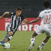 Botafogo e Vasco têm chances baixas de se salvarem juntos; número mágico é 43 pontos