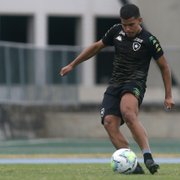Botafogo: após título e clássico na base, Cesinha volta a treinar no profissional