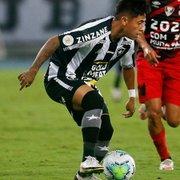 Lecaros será mais um craque da imaginação no Botafogo?