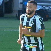 Faxina no elenco do Botafogo deixa mais evidentes erros do rebaixamento
