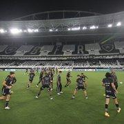 Botafogo tem pior segundo turno e segundo pior desempenho como mandante da história do Brasileirão