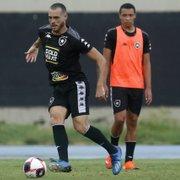 Com Marcelo Chamusca, treino do Botafogo tem reforços e novidades; veja fotos