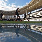 Reta final: o que o Botafogo precisa para se classificar no Carioca