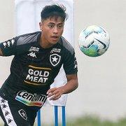 Lecaros merece menos chances no Botafogo do que a dupla Felipe Ferreira/Marcinho?