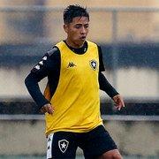 Após empréstimo ao Avaí, Lecaros tem contrato reativado com o Botafogo