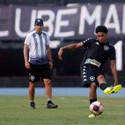 Base do Botafogo dá conta do recado e mostra personalidade entre os profissionais