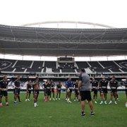 Comentarista: 'Botafogo tem que pensar no acesso, mas também se programar para 2022'