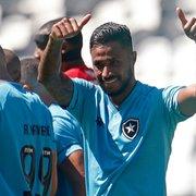 Frase de Diego Gonçalves deixa escapar diferença entre Chamusca e Enderson no Botafogo