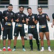Blog: 'Com mais 13 pontos, volta à Série A tem tudo para se tornar realidade no Botafogo'