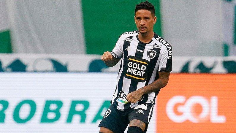 Luiz Otávio em Palmeiras x Botafogo   Campeonato Brasileiro 2020